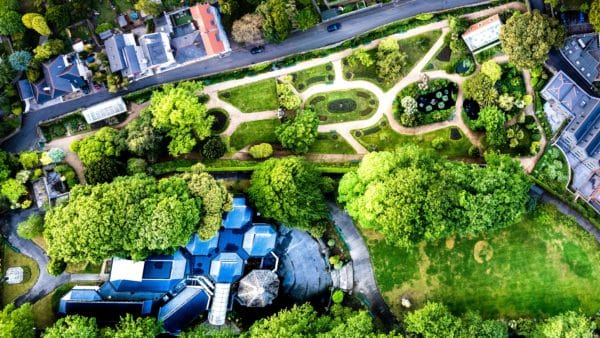 a green neighborhood